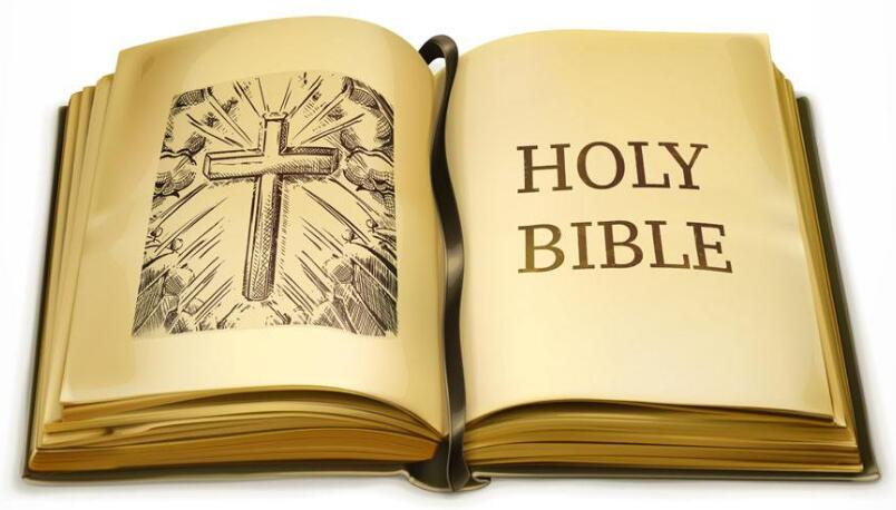 《泡学达人圣经》